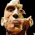 Bodies - Exhibición desde el 17 de junio al 13 de agosto