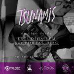 Tsunamis libera concierto desde Portaldisc